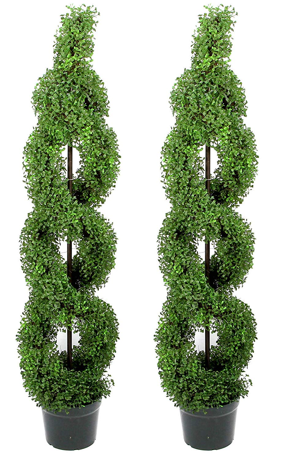 Double Spiral Topiary Plant Tree