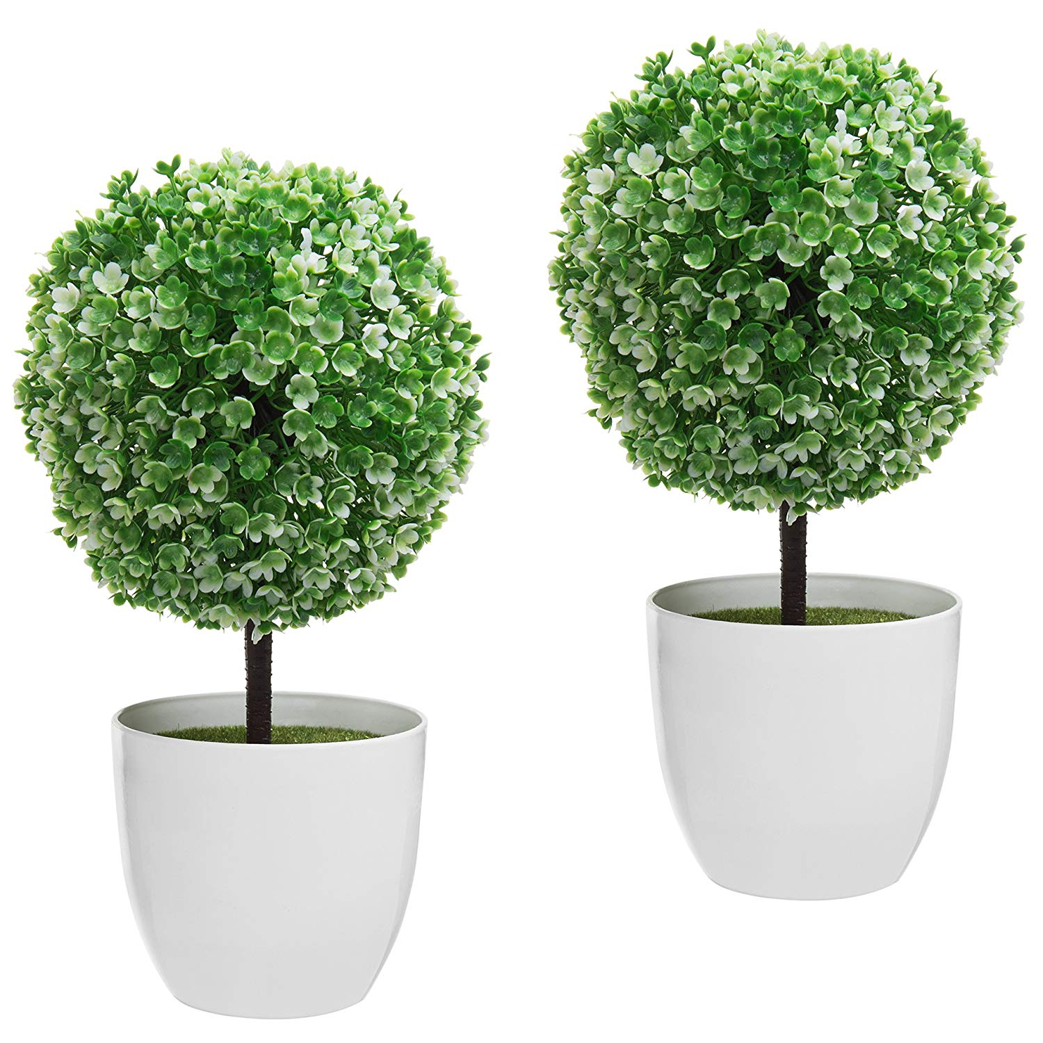 cheap topiary trees