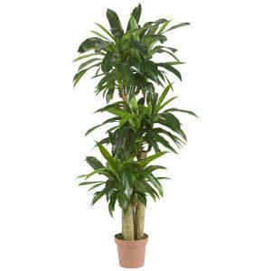 best silk plants