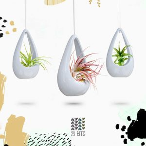 best indoor hanging planters